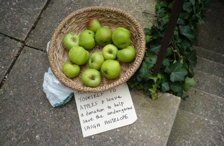 Apples For Donations