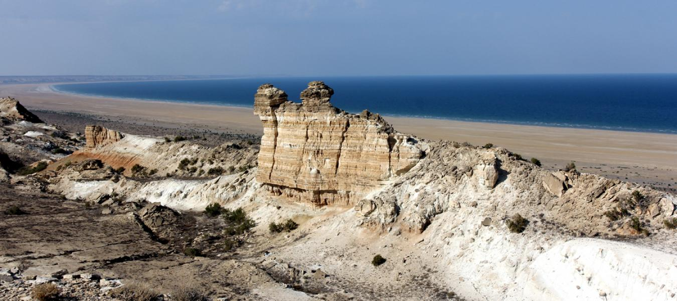"The ""Saigachy"" reserve in Uzbekistan has been reorganized"