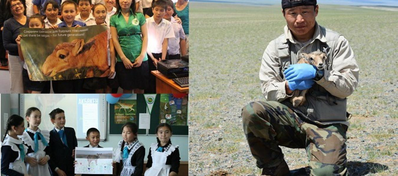 The Saiga Conservation Alliance 2016 Young Conservation Leaders award